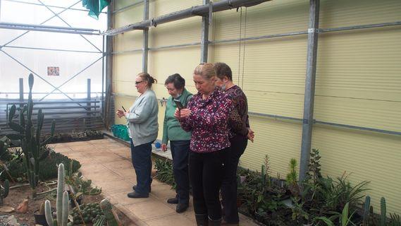 экскурсия по суккулентным растениям