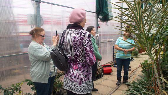 экскурсия по тропическим растениям